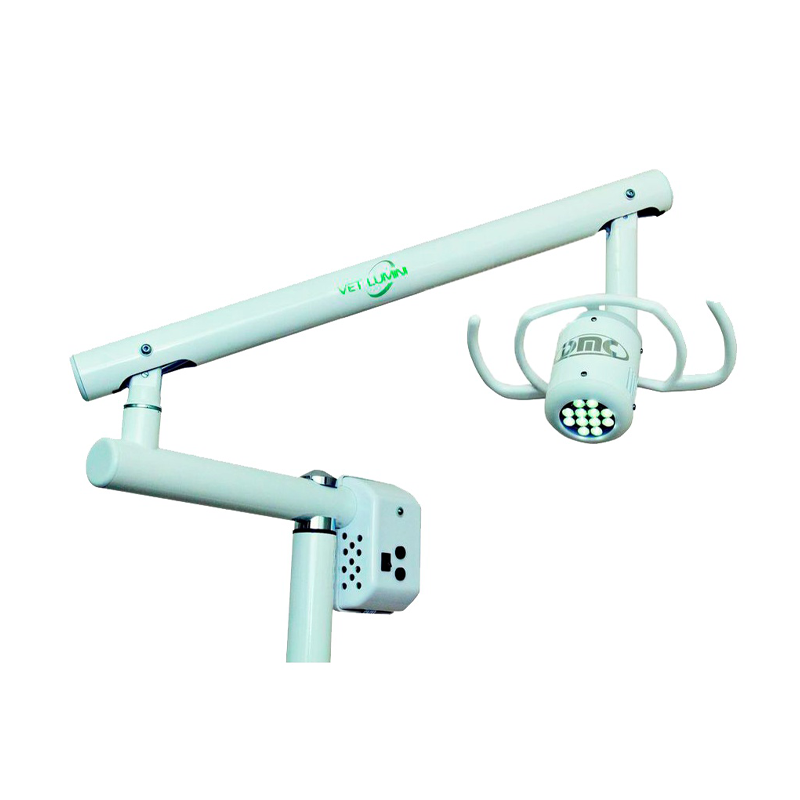 Equipamento de laser veterinário dmc vet lumini